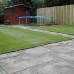 Turf lawn